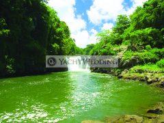 waterfall full